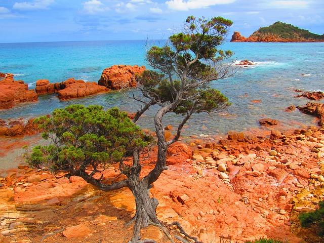 příroda na Sardinii