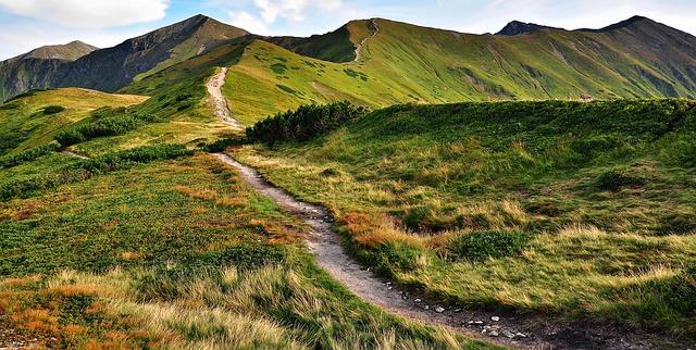cesta  přírodou