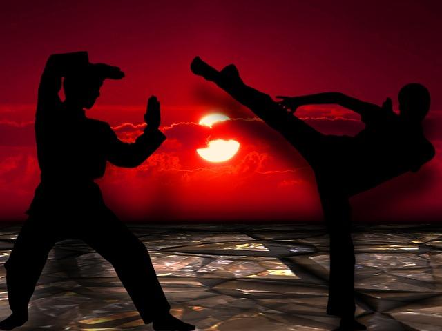 bojová umění