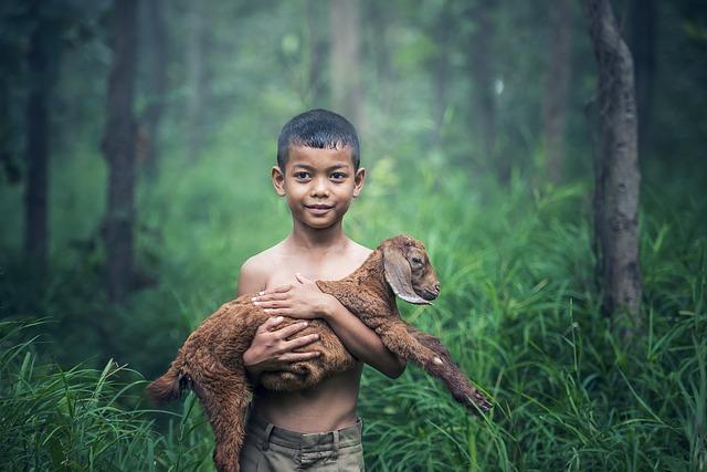 chlapec s ovcí.jpg