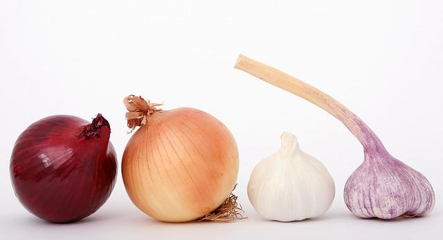 česneky a cibule
